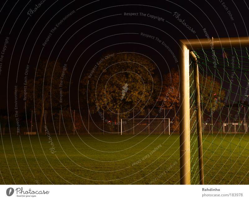 Flutlichtwinkel Baum Freude Sport Spielen Bewegung Gras Metall glänzend Freizeit & Hobby Fußball Ecke Rasen Spielfeld Tor Pfosten Stadion