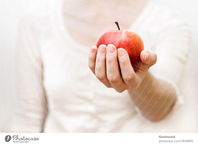Empfehlung Lebensmittel Frucht Apfel Ernährung Bioprodukte Vegetarische Ernährung Mensch feminin Junge Frau Jugendliche Körper Arme Hand Finger 1 18-30 Jahre