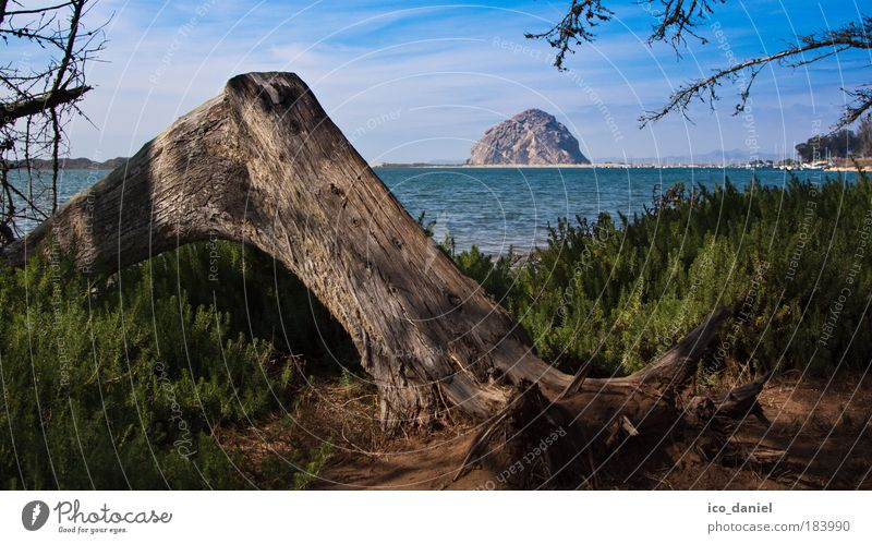 Kalifornien - Morro Bay Natur blau Wasser grün Baum Pflanze Meer Sommer Strand Wolken Ferne Umwelt Landschaft Berge u. Gebirge Freiheit braun