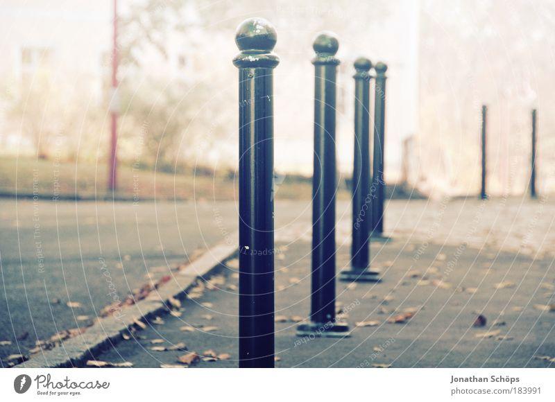 im Gänsemarsch über die Straße blau Blatt Farbe Herbst braun Zufriedenheit Ordnung ästhetisch weich Bürgersteig Grenze Reihe Barriere Wege & Pfade Altstadt