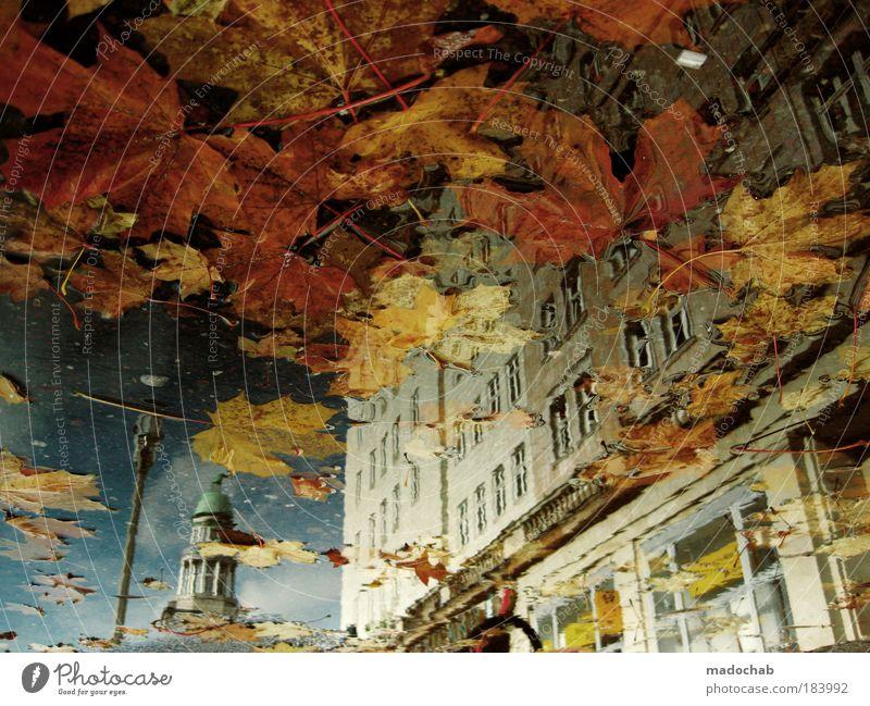 AQUARELL Stadt schön Farbe Erholung Blatt Wärme Herbst Gefühle Berlin Kunst außergewöhnlich Stimmung Wetter Zufriedenheit authentisch ästhetisch