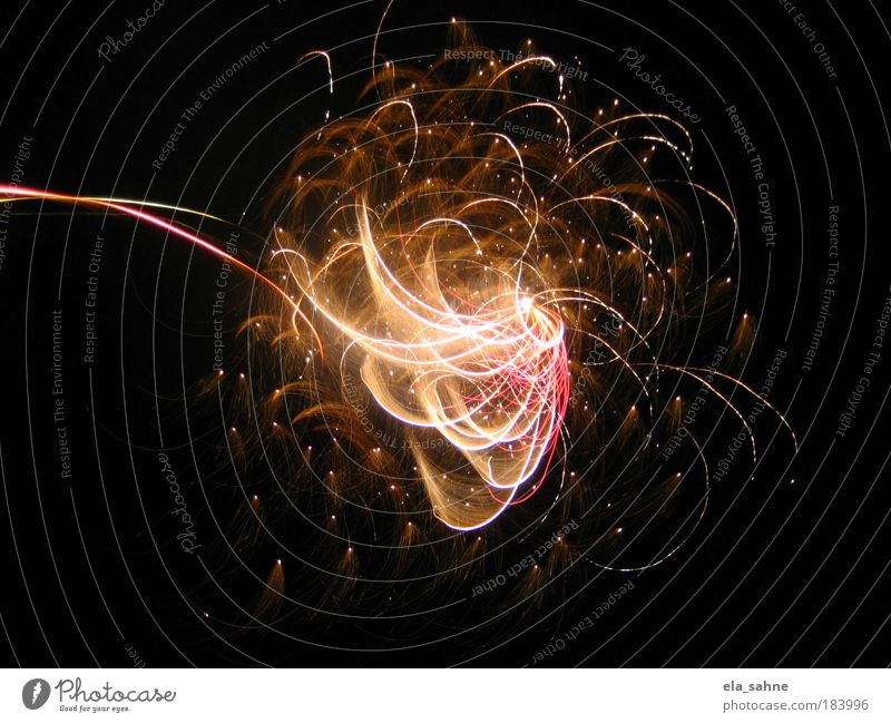 fireworks flower schön schwarz Farbe Gefühle oben Bewegung rosa gold Fröhlichkeit ästhetisch stehen Nacht Nachthimmel beobachten fantastisch Lebensfreude