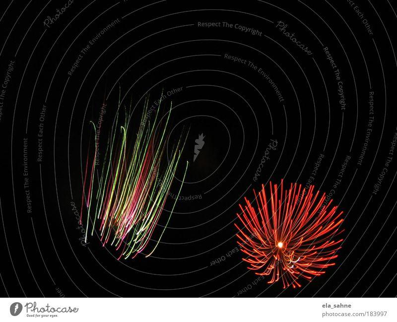 fireworks flower_2 Freude Farbe Gefühle Freiheit Kraft Energie ästhetisch Silvester u. Neujahr bizarr