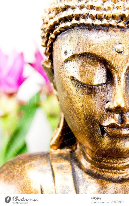 Buddha Mensch Erholung ruhig Gesicht Religion & Glaube Kunst Körper Kultur Wellness nah Verstand Asien Mitte Meditation Statue
