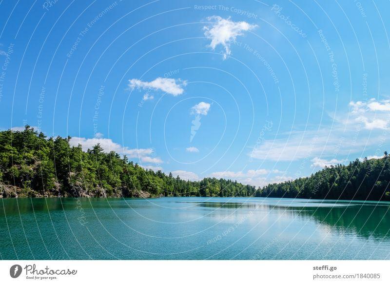 kanadische Idylle Natur Ferien & Urlaub & Reisen Sommer Landschaft Erholung Ferne Berge u. Gebirge Umwelt außergewöhnlich Freiheit Schwimmen & Baden See