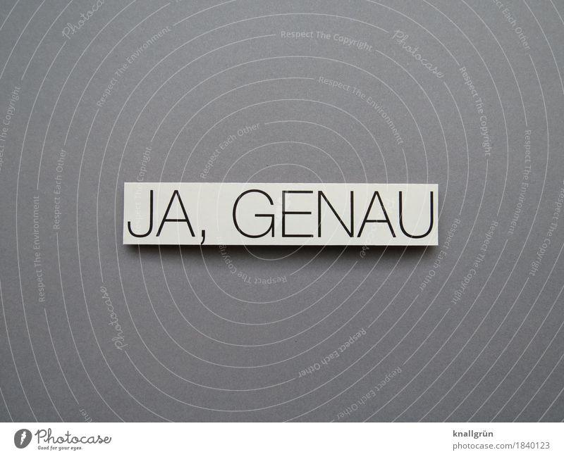 JA, GENAU Schriftzeichen Schilder & Markierungen Kommunizieren eckig grau schwarz weiß Gefühle gewissenhaft Wahrheit Neugier Entschlossenheit Genauigkeit