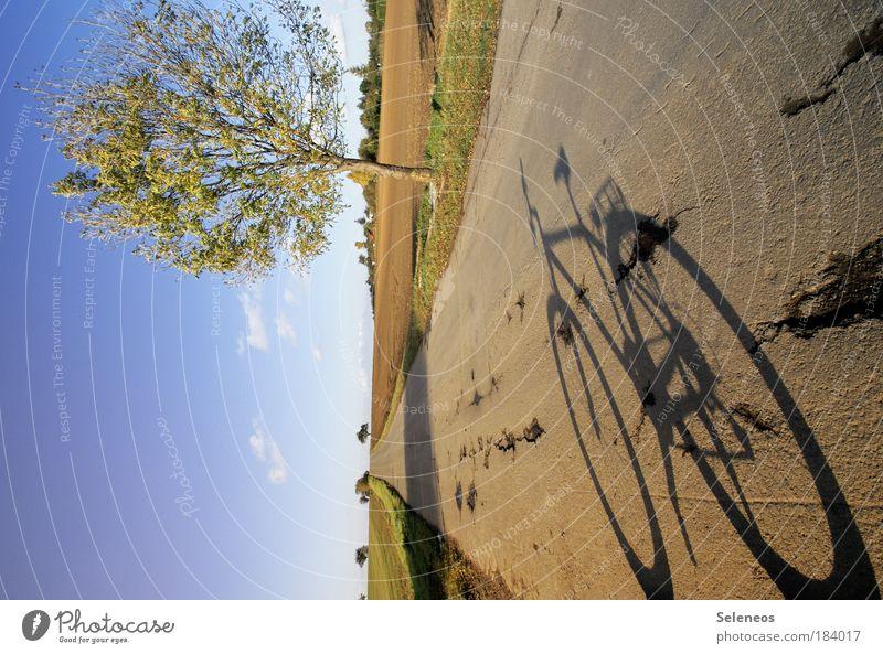 Verkehr (t) Farbfoto Außenaufnahme Menschenleer Textfreiraum links Tag Schatten Kontrast Lichterscheinung Sonnenlicht Freizeit & Hobby Ausflug Fahrradfahren