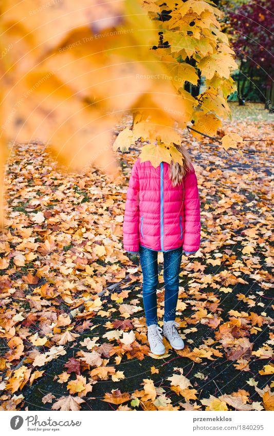 Mädchen versteckt hinter gelbem Herbstlaub in einem Park schön Garten Natur Baum Blatt Grünpflanze stehen hell mehrfarbig Farbe herbstlich Ast brilliant