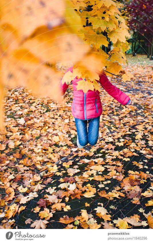 Das Mädchen springend hinter gelbe Herbstblätter in einem Park Lifestyle schön Garten Jugendliche 1 Mensch 8-13 Jahre Kind Kindheit Natur Baum Blatt Grünpflanze