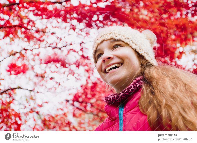 Froschperspektive des glücklichen Mädchens unter Rot verwischte Herbstbaum Glück schön Garten Natur Baum Blatt Park Hut Behaarung Lächeln Fröhlichkeit hell rot