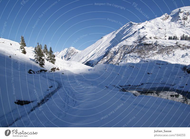 Winter in den Bergen Außenaufnahme Umwelt Landschaft ästhetisch Schnee Berge u. Gebirge Schweiz Engelberg Schatten Sonne Blauer Himmel Tanne See Wasser