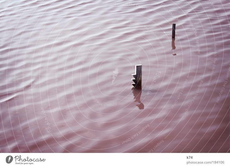 √ ! Natur Wasser ruhig See Landschaft Wellen rosa Fluss Urelemente seicht