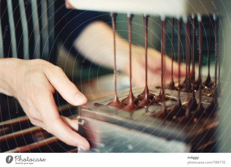 Schokolade Handgemacht Mensch braun Arbeit & Erwerbstätigkeit Lebensmittel maskulin Ernährung süß genießen Beruf Appetit & Hunger Süßwaren lecker Flüssigkeit