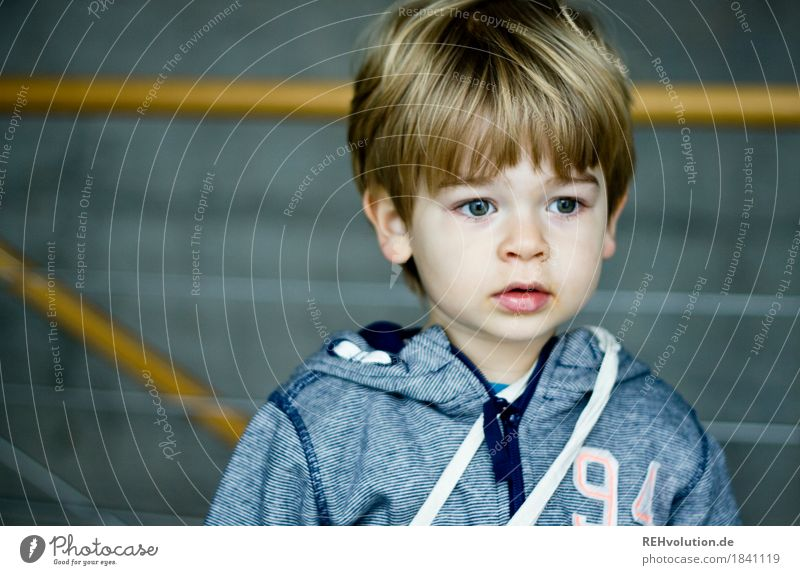 in der Hochschule Mensch maskulin Kind Kleinkind Junge Gesicht 1 1-3 Jahre Pullover Haare & Frisuren Beton beobachten authentisch klein natürlich niedlich blau