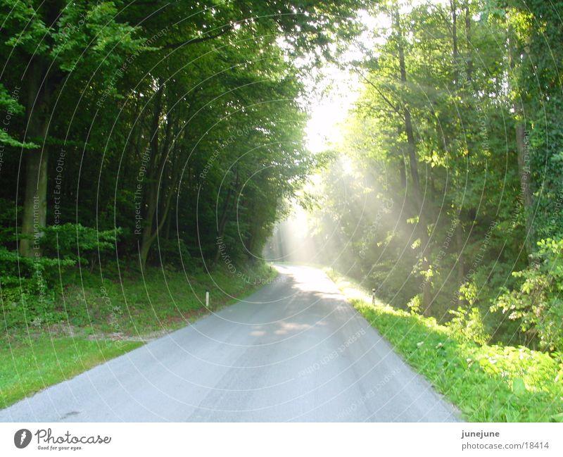 Straße, einsam Die zum Himmel