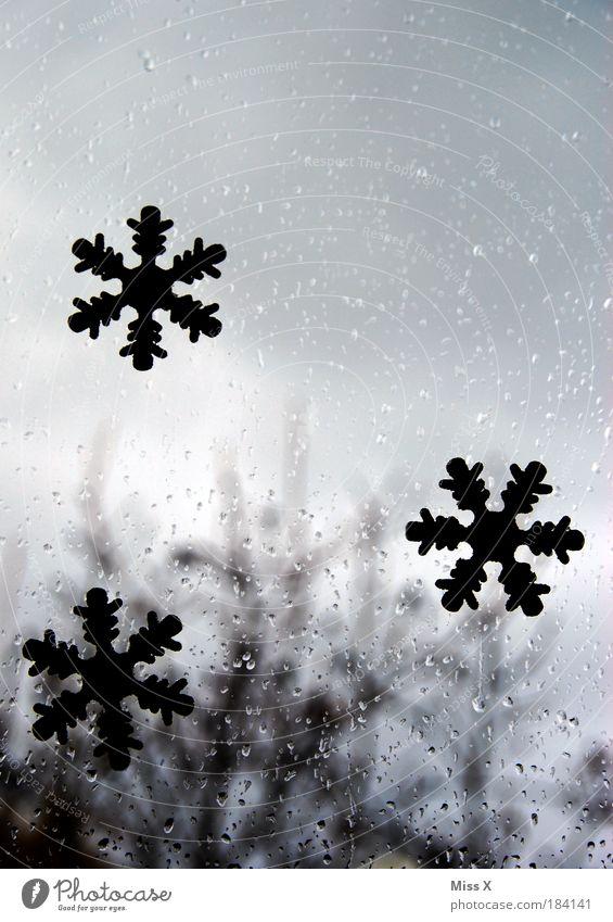 Weiße Weihnacht ??? Wasser Weihnachten & Advent Wolken kalt Schnee Fenster grau Tiefenschärfe Umwelt Farbfoto Textfreiraum Traurigkeit Regen Natur Wetter Wassertropfen