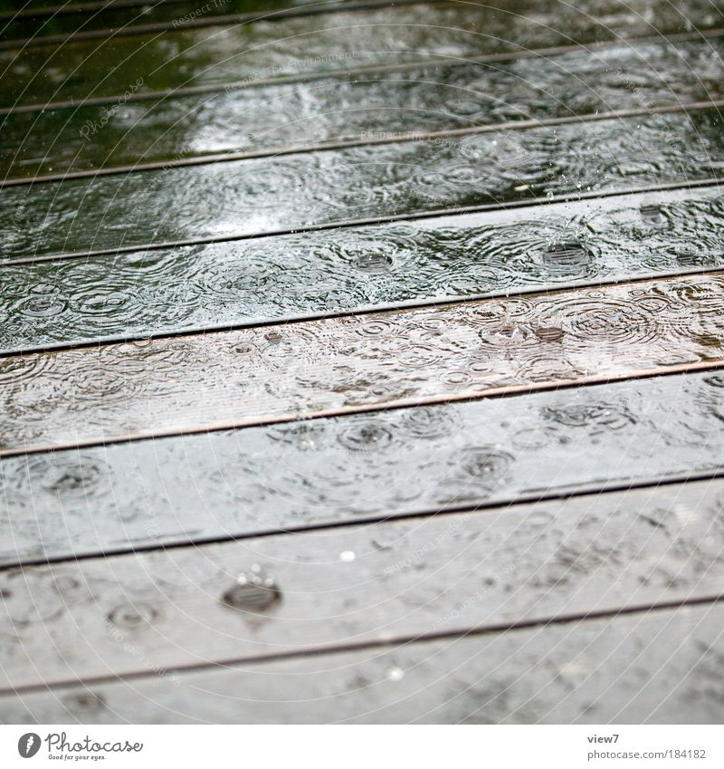 drei Tage Regenwetter Natur Wasser kalt Erholung springen Freiheit Holz träumen Traurigkeit Regen Linie Tanzen Umwelt Wassertropfen nass einfach