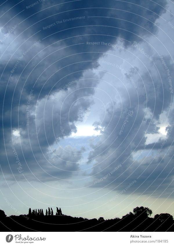 Unwetter im Anmarsch II Himmel Baum blau schwarz Wolken gelb dunkel Bewegung grau Landschaft Wetter bedrohlich beobachten außergewöhnlich Unwetter Flussufer