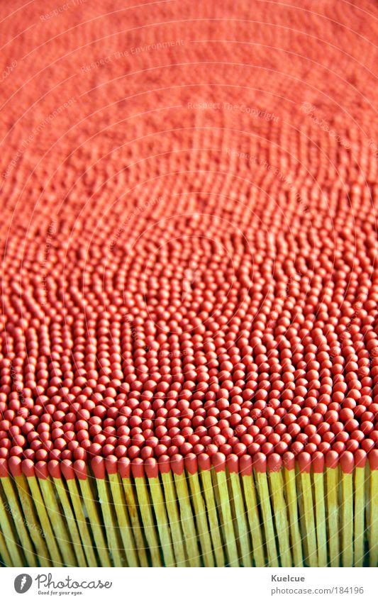 Streichhölzer rot Makroaufnahme Holz Wissenschaften Streichholz Brennholz Schwefel