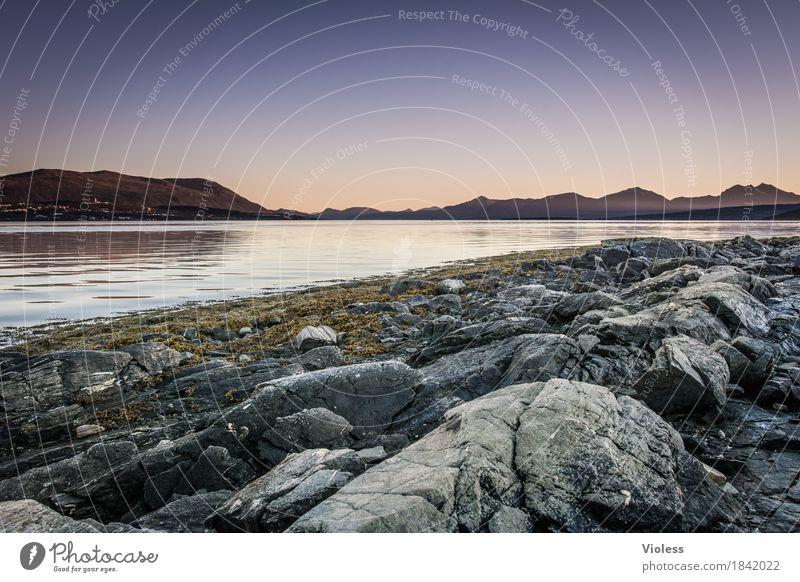 ich denke oft an... Natur Wasser Landschaft Küste Stein Felsen Urelemente Seeufer Flussufer Norwegen Fjord