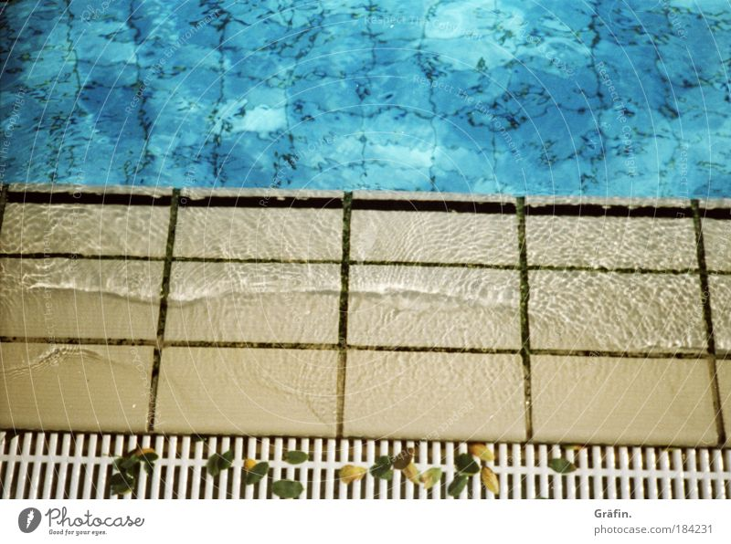 Sommerreste blau Wasser Ferien & Urlaub & Reisen Sommer Blatt Sport Wellen Freizeit & Hobby nass Wassertropfen Schwimmbad Fliesen u. Kacheln Abfluss Freibad Geplätscher Sportstätten