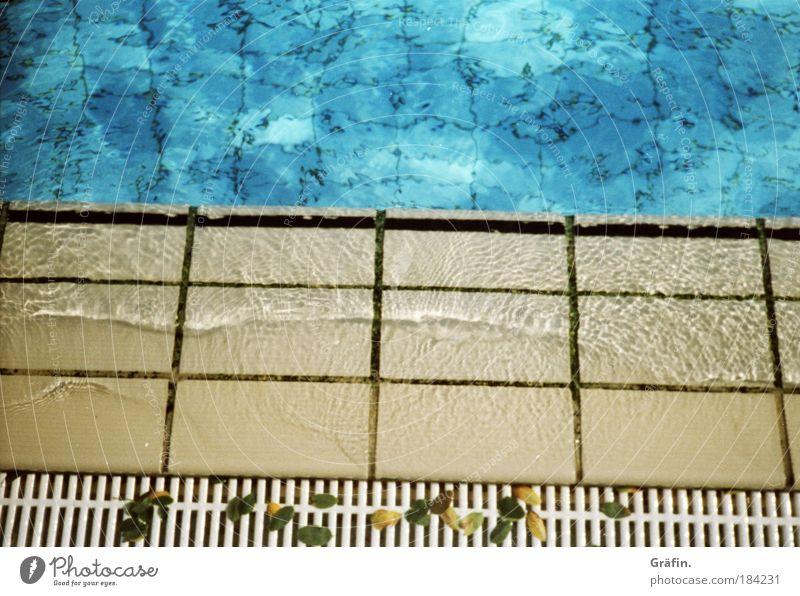 Sommerreste Farbfoto Außenaufnahme Textfreiraum oben Tag Freizeit & Hobby Wellen Schwimmbad Freibad Sportstätten Wasser Wassertropfen Blatt Menschenleer nass