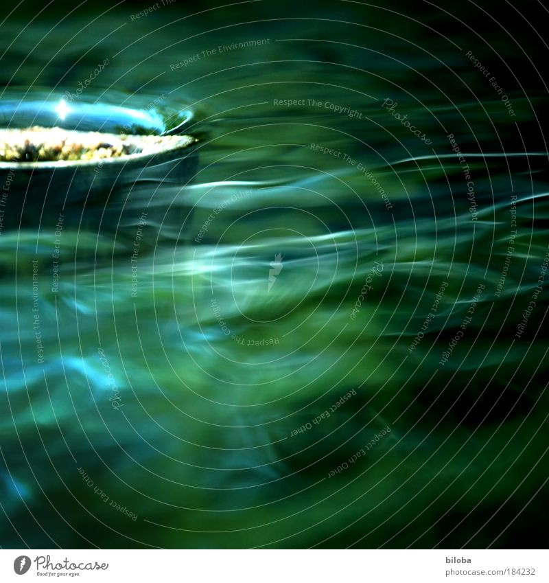 Der Sommer fliesst ab! Natur Wasser grün blau Winter gelb Herbst Wellen Umwelt nass Fluss nah weich Klima geheimnisvoll