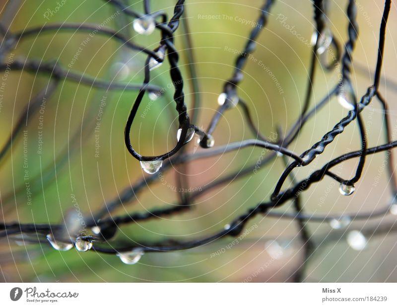 druppels Wasser kalt Wiese Park Regen Metall glänzend Nebel Wetter Umwelt Wassertropfen nass frisch Klima Zaun Draht
