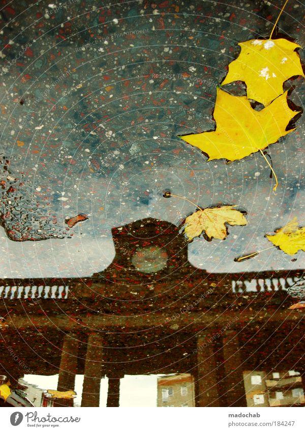 Zeit abgelaufen. Wasser Blatt Herbst Architektur Umwelt Zeit authentisch Ende Klima Uhr Vergänglichkeit Sehnsucht Vergangenheit Jahreszeiten Wachsamkeit Unwetter