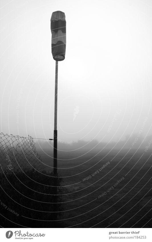 Luft raus Natur Himmel Herbst Tod grau Landschaft Eis warten Nebel Wind Wetter Umwelt Frost Fahne einfach Klima