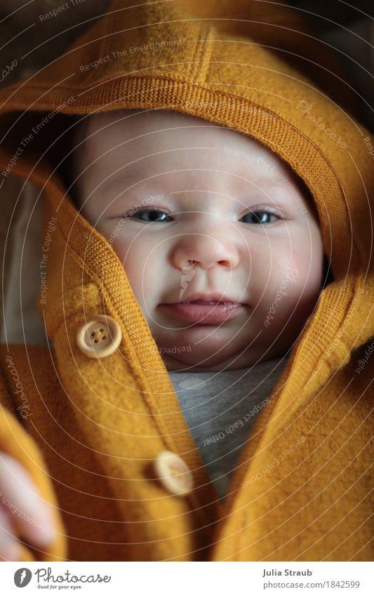 Halloo feminin Baby Kindheit Kopf 1 Mensch 0-12 Monate Schurwolle Holz Knöpfe Kapuzenjacke Mütze Lächeln Freundlichkeit Fröhlichkeit kuschlig klein niedlich