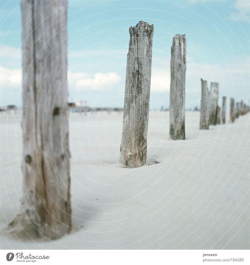 1862247 Natur Himmel Sommer Strand Ferien & Urlaub & Reisen Ferne Erholung Holz Sand Umwelt Ausflug Meer Nordsee Schleswig-Holstein Holzpfahl Nordfriesland