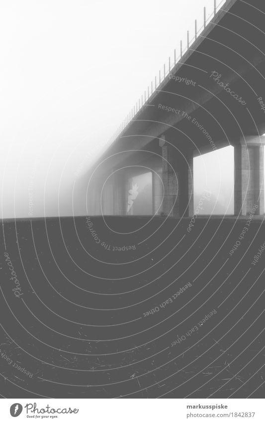 autobahnbrücke Umwelt Natur Landschaft Feld Stadtrand Menschenleer Bauwerk Gebäude Architektur Brücke Verkehr Verkehrswege Personenverkehr Straßenverkehr