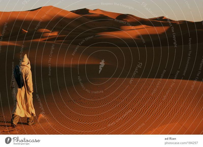 Into the Wild Farbfoto Außenaufnahme Dämmerung Ferne Freiheit Safari Expedition Mensch maskulin Rücken 1 Umwelt Wüste Sahara Afrika Marokko Fußgänger genießen