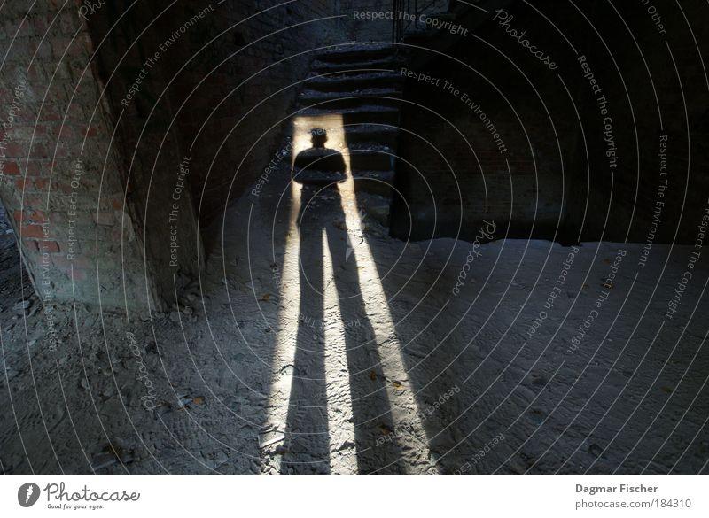 It's me! Mensch Mann Haus Erwachsene kalt Wand Mauer hell Angst Kraft Treppe maskulin dreckig groß stehen beobachten