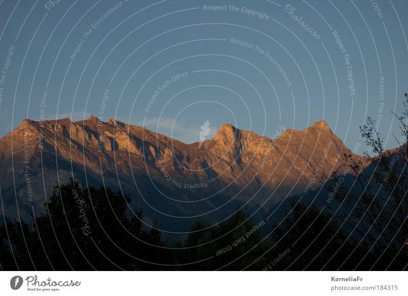 Alpenglühen Natur Ferien & Urlaub & Reisen Berge u. Gebirge Landschaft Kraft Sehnsucht Silhouette Gipfel Fernweh Heimweh Sonnenaufgang