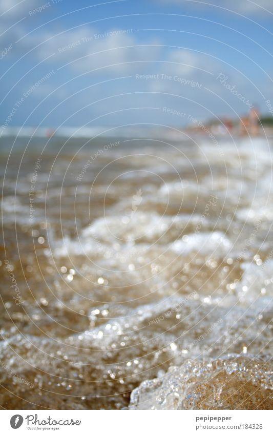 Fischperspektive blau Wasser Ferien & Urlaub & Reisen Sonne Meer Sommer Strand gelb Küste Sand Wellen Wind nass Insel Schönes Wetter Flüssigkeit