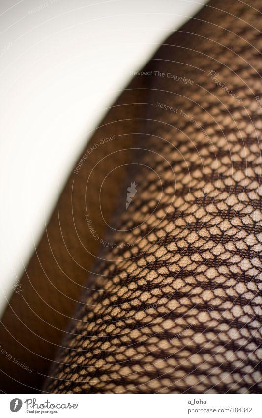 xxx Mensch schön schwarz feminin Beine Linie ästhetisch Netzwerk Romantik dünn nah trendy Strumpfhose Begierde Knie Ornament