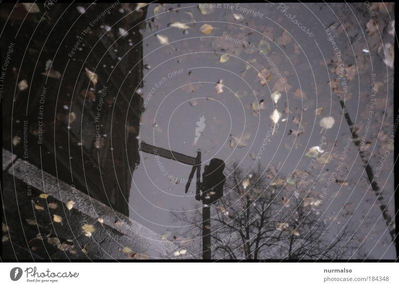 Optima'le Strasse Gedeckte Farben Dämmerung Silhouette Reflexion & Spiegelung Lichterscheinung Häusliches Leben Wohnung Haus Kunst Umwelt Wasser Klima
