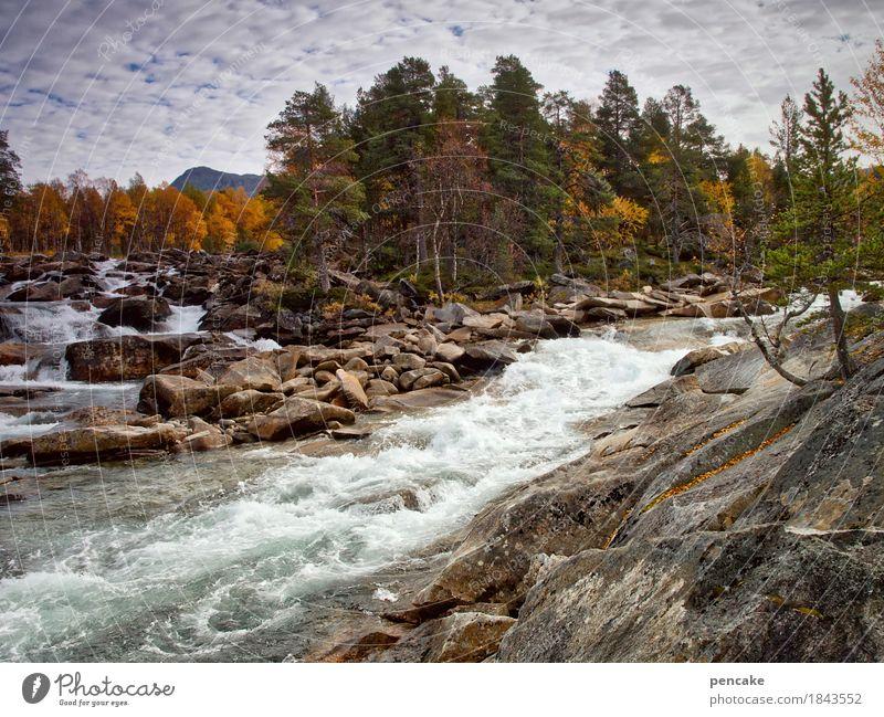 stromanbieter Natur Landschaft Urelemente Wasser Himmel Wolken Herbst Felsen Berge u. Gebirge Wellen Fluss Wasserfall fantastisch frisch groß Geschwindigkeit