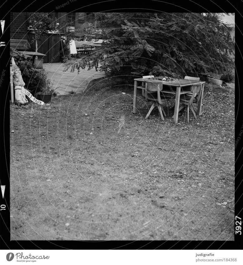 Hamburg Baum Einsamkeit Garten Erde Tisch Sträucher Häusliches Leben Dekoration & Verzierung einzigartig Stuhl einfach Möbel Gartenzwerge Sammlerstück