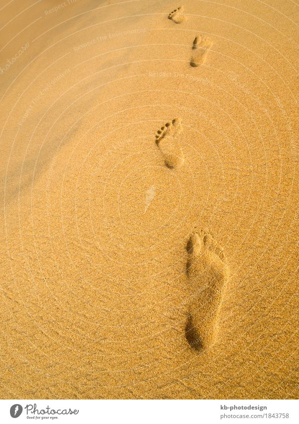 Footprint at the beach in Sri Lanka Erholung Ferien & Urlaub & Reisen Strand Sand sunny stressed footprint footprints barefoot time-out sight sea sky landscape