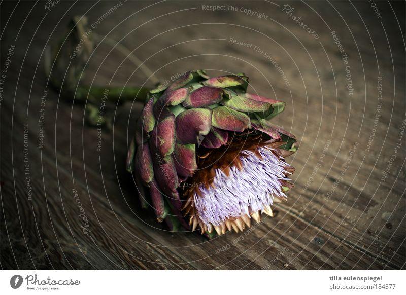 . Farbfoto Innenaufnahme Menschenleer Textfreiraum oben Textfreiraum unten Hintergrund neutral Pflanze Holz Natur Artischocke Gemüse Holzfußboden essbar