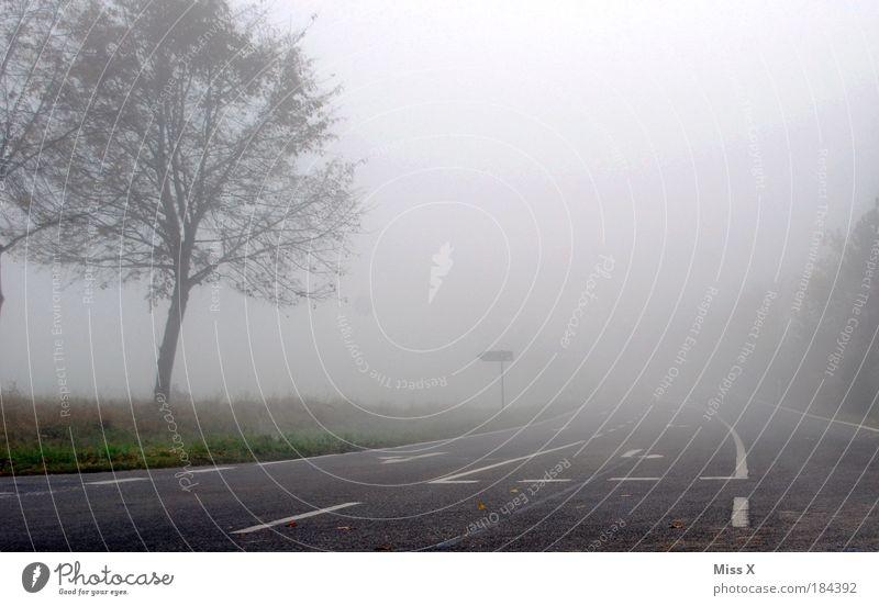 Vorsicht Frühnebel Natur Himmel Baum Ferne Straße dunkel kalt Herbst Wege & Pfade Luft Feld Angst Straßenverkehr Nebel Wetter