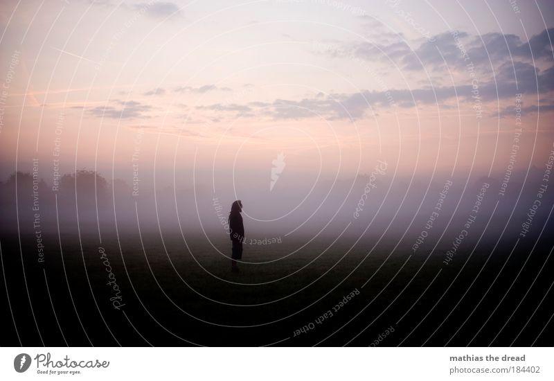 MELANCHOLIE Mensch Himmel Einsamkeit Wolken ruhig Umwelt Landschaft Wiese Herbst Traurigkeit Horizont Feld Nebel warten maskulin stehen
