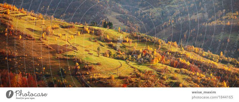 Herbst Bergpanorama. Oktober auf Karpatenhügeln. Fallen Natur Ferien & Urlaub & Reisen grün Baum Landschaft rot Haus Ferne Wald Berge u. Gebirge Umwelt gelb