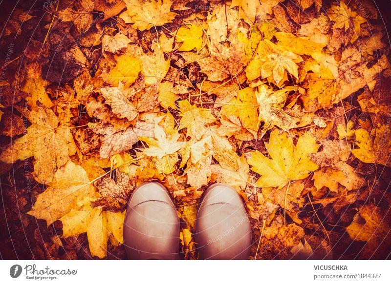 Gummistiefel auf Herbstlaub Lifestyle Design Ferien & Urlaub & Reisen Garten Mensch Fuß Natur Schönes Wetter Blatt Park Wald gelb Hintergrundbild November
