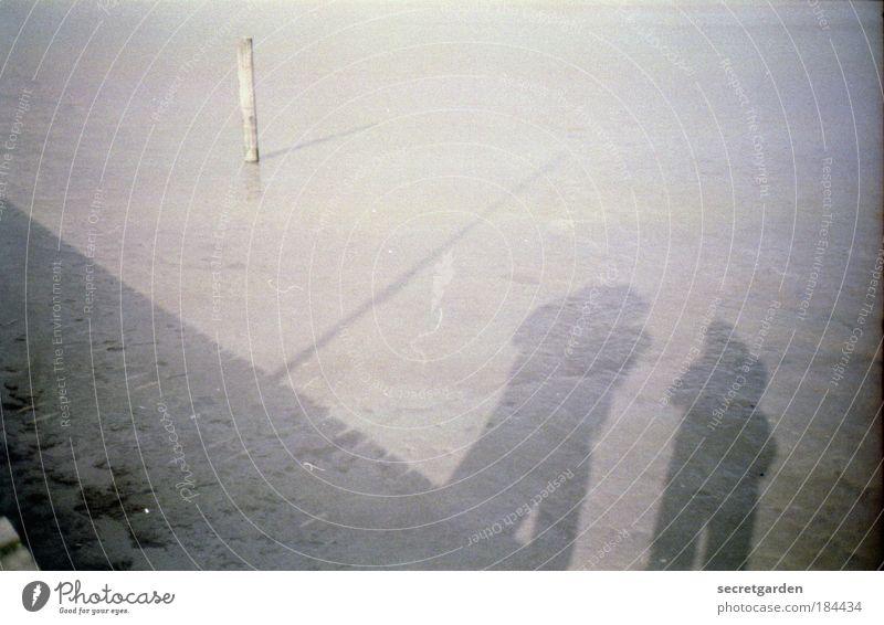 der zeitpunkt und der geheime garten sitzen auf dem trockenen. Mensch Meer Ferien & Urlaub & Reisen kalt grau Freundschaft Zusammensein Nebel Team analog Steg