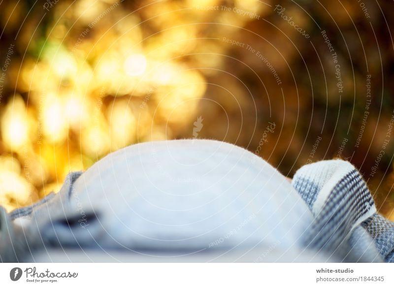 Babybauch Mensch feminin Mädchen Junge Frau Jugendliche Erwachsene Eltern schwanger Kinderwunsch Bauch Herbst dick Übergewicht Farbfoto Außenaufnahme Tag
