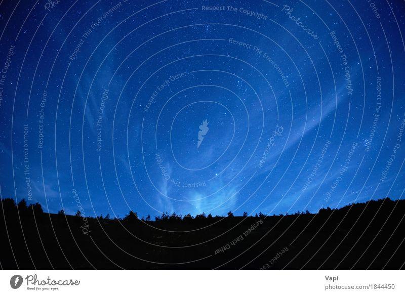 Blauer dunkler nächtlicher Himmel mit vielen Sternen Natur blau Farbe weiß Baum Landschaft Wolken dunkel Wald Berge u. Gebirge schwarz hell Horizont Idylle